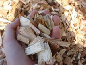 Starchl High Quality Wood Chip - RS Biomass